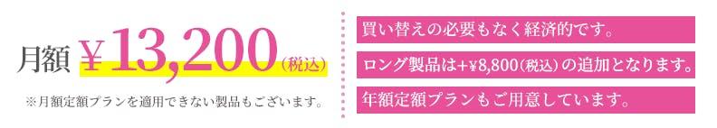 月額¥13,200(税込)