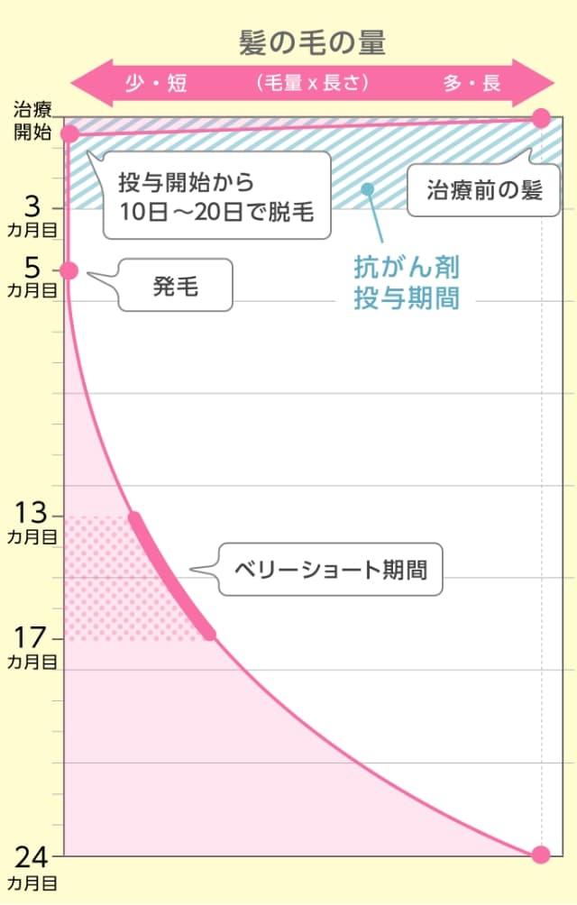 髪の毛の変化(グラフ)
