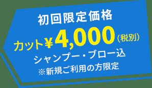 初回限定価格 カット¥4,400(税別) シャンプー・ブロー込 ※新規ご利用の方限定
